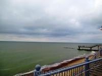 Балтийское побережье в районе города-курорта Светлогорска