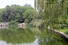 В зоопарке можно не только на зверюшек полюбоваться, но и парком насладиться в полной мере.