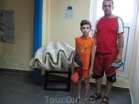Аквариум в городе Родос.