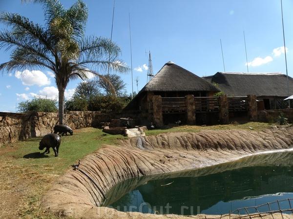 Юар фото - фотографии южно африканская республика