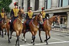 Вот и знаменитая королевская конница!