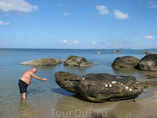 Автор кормит каменную черепаху. Лонг Бич.
