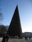 Новогодние каникулы 2012 гю