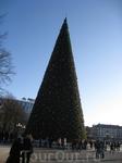 Новогодняя елка на центральной площади