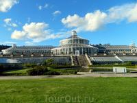 Копенгаген. Ботанический сад. Оранжерея тропических растений.
