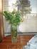 приятно, что в доме стоят и живые цветы