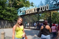 Первый день-зоопарк в Бронксе