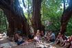 В Арамболе есть священное дерево - баньян, по легендам, у которого прожили несколько дней The Beatles. Дерево Баньян до сих пор остается местом половничества ...