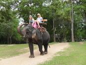 слон решил стащить мою шляпу)))