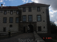 Построили замок для Флориана Гриспека в 1593 году. Имя архитектора история не сохранила. Известно только что был он родом из северной Италии. В 1623 году владельцем замка Нелагозевес стал старинный дв