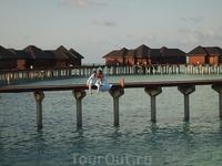 Прекрасная жизнь начинается с прекрасных мыслей…на Мальдивах,так и происходит!