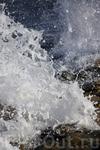 рождение Афродиты из пены морской