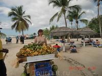 Тропический рай для гурманки.Манго,маракуйя,бананы,кокосы,арбузы