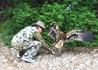 Фото практически подпольное. Украинцы не разрешают снимать птичку без гривен...