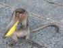 мартышко, которое на подругу накинулось подляцки сзади и вытащило банан из сумки