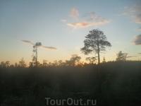 по дороге в Беломорск, облако похоже на Чайку