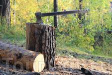 Олхинское плато. Осень
