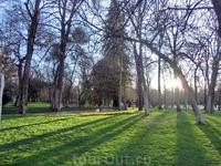 Солнце поднимается над парком.