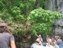 остров обезьян. к сожалению уровень воды был слишком высоким, и приходилось кормить их с лодки