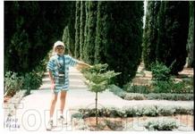 Бахайские сады в Акко.Ливанский кедр В двух километрах севернее Акко расположен великолепный парк - Сады Бахаи.В центре этого парка находится самое святое ...