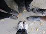 наши ножки, которые проделали столь не лёгкий путь!