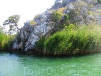 берег - река Дальян
