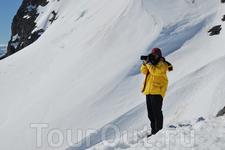 Путешествие в Антарктику идеально подходит для фотографов.