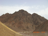 Сафари и Эйлатские горы...