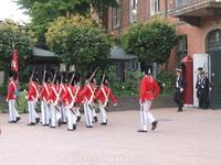 Маленькие королевские гвардейцы