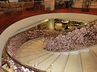 Украшенная лестница магазина, ведет на нижний этаж, где продаются сыры, вино, колбасы. На первом этаже - чай, кофе, сладости.