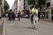 По пути встретили конную полицию.