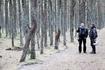 """""""Танцующий лес"""" - достопримечательность Куршской косы."""