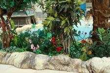 Растения внутри аквапарка