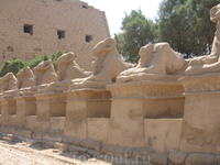 колонна из мини-сфинксов перед входом в Храм