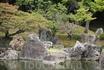 сад в замке Нидзе-дзе. Киото