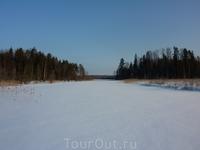 Красота! Тишина. Исток речушки Киуй, вытекающей из Мельничного озера. Слабое течение, лед тонковат. При невнимании можно провалиться. Попадается средний ...