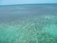 Карибское море...