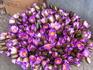 Лотосы, но они их почему-то зовут лилии.