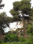 А этот пейзаж - это пожалуй именно то, что отличает Сады Святой Клотильды от других - обрывистые скалы и изумрудное Средиземное море.
