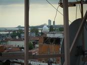 вездесущие стамбульские чайки
