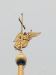 Первая фигура ангела-хранителя Санкт-Петербурга на шпиле Петропавловского собора была выполнена голландским мастером Г. ван Болесом в 1720-х годах. После пожара 1756 года она была восстановлена по рис