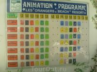 расписание анимации