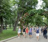В Москве все время что-то происходит, интересное как для москвичей, так и для гостей столицы. Всегда можно стать участником или зрителем какого-нибудь ...