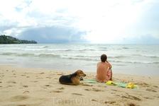 Тут все другое, все нереальное. Пляж Камала