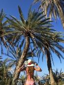 Знаменитый пальмовый пляж