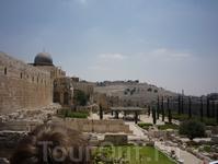 На переднем плане слева - купол мечети Аль-Акса. На заднем плане - древнее еврейское кладбище.