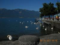 Веве. Женевское озеро.