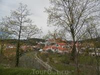 Вид на замок через через деревья со стороны автовокзала
