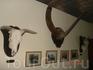 Музей А. Йерсена. Здесь представлены его личные вещи, книги, лабораторное оборудоавание.