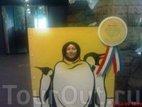 я всё ещё изображаю пингвина